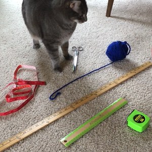 Cupboard Crafts & Experiments: Measuring with Daisy
