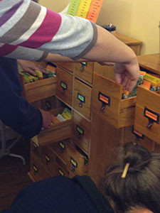 High Prairie Library Launches Seed Library