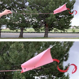 Kids Make: DIY Kites