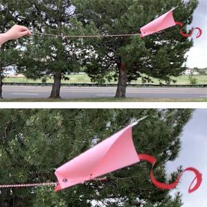 Kids Make: DIY Kites