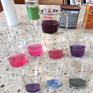 Kids Stem: Cabbage Juice Chemistry